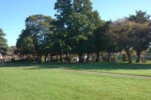 Elms Park today
