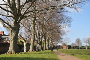 Wellingborough's Open Spaces