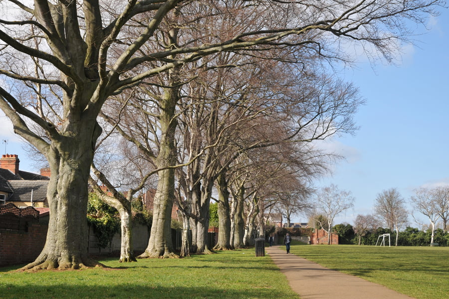 Wellingborough's Open Spaces