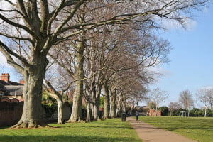 Public Open Space in Wellingborough
