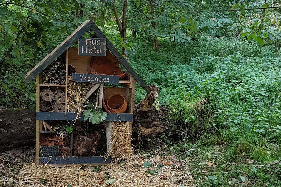 TEP attend nature day and build bug hotels at North Kilworth Millennium Green