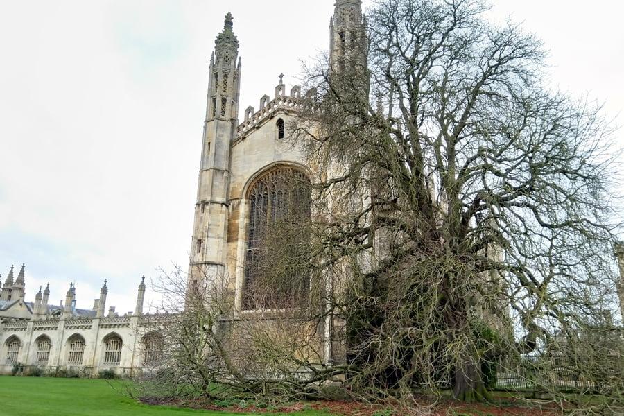 Cambridge University Cropped