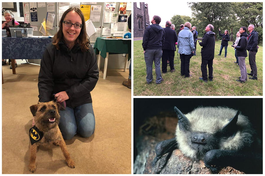 The Environment Partnership_Bat Walk_pipistrelle bat
