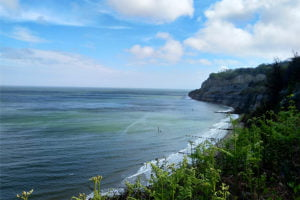 Managing Landscapes Through Climate Change