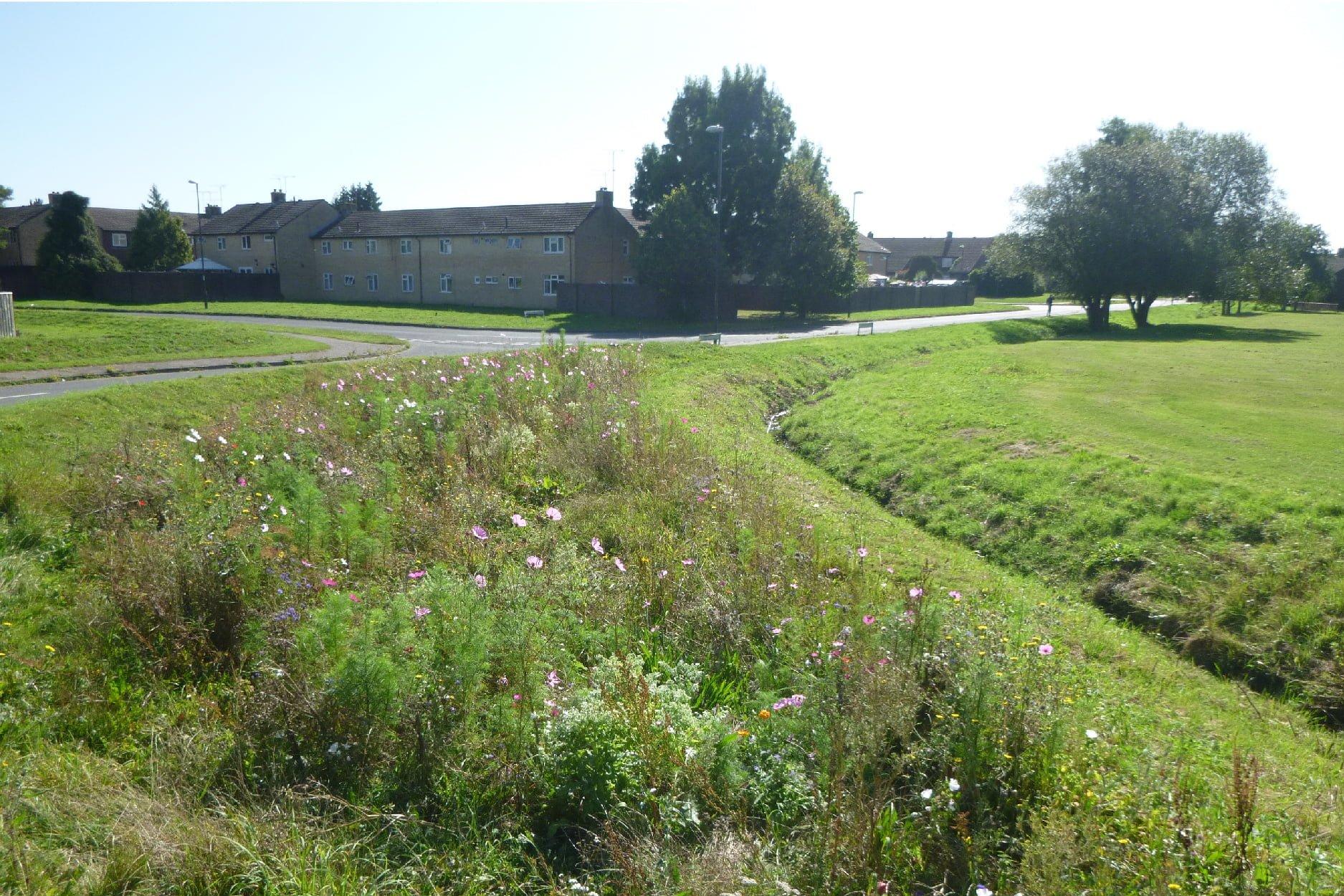 Crawley Open Space Study - Bewbush West Playing Field