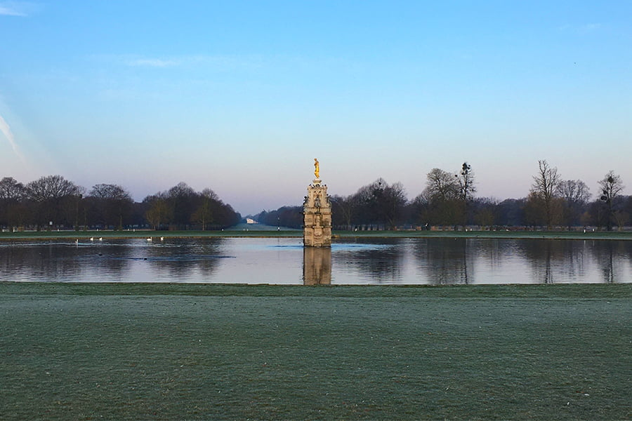 Bushy Park: one of the eight royal parks the charity looks after.