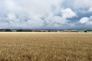 Distinctive West Northamptonshire Landscapes