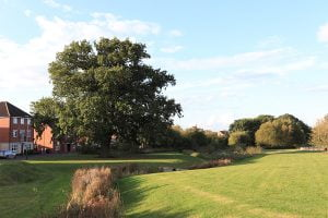 North Hamilton, Leicester - Public Open Space