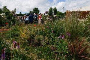 Chatsworth_Safeguarding Our Landscapes_Landscape Management