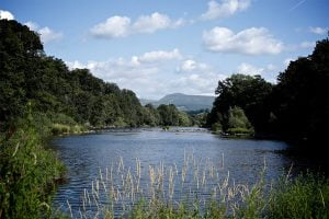 Friends of the Upper Wye